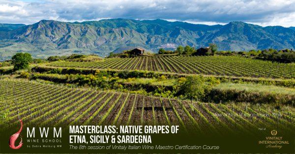 Sicily Wine